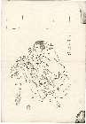 MFA-11.39053「いがみの権太」 弘化04・09・11河原崎『義経千本桜』