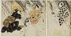 MFA-2009.5008.2a「団七 松本幸四郎」 文化08・07・18市村座『謎帯一寸徳兵衛』