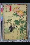 NDL-114-01-079「楳嶺花鳥画譜」 「芍薬」「鸛」・・『』