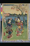 NDL-153-00-044「嵐山桜狩之図」 ・・『』